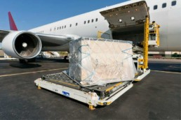 transporting timber boxes overseas